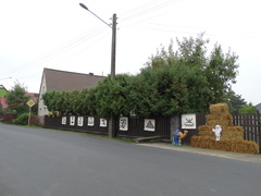 Galeria dożynki wiejskie 2017