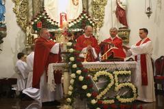 Galeria 25 lat kapłaństwa 2014